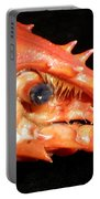Up Close Lobster Portable Battery Charger