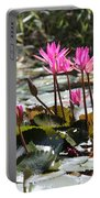 Up Close Water Lilies  Portable Battery Charger
