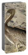 Up Close With A Pelican On A Sand Beach Portable Battery Charger