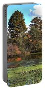 Urieville Pond Portable Battery Charger