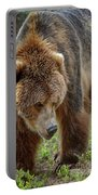 Ursus Arctos Portable Battery Charger by Heiko Koehrer-Wagner