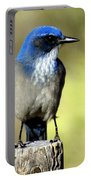 Utah Bird Portable Battery Charger