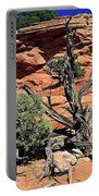 Utah Juniper And Red Rock Portable Battery Charger