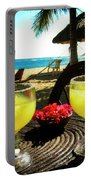 Vacation Portable Battery Charger