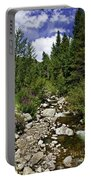 Vail Stream In The Summer 2 Portable Battery Charger