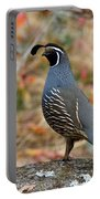 Valley Quail Portable Battery Charger