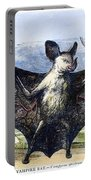 Vampire Bat Portable Battery Charger