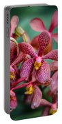 Vanda Orchids Portable Battery Charger