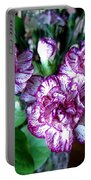 Variegated Carnations Portable Battery Charger