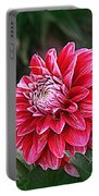 Variegated Colored Dahlia Portable Battery Charger