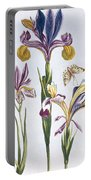 Variegated Iris Portable Battery Charger