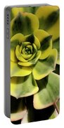 Variegated Succulent Portable Battery Charger