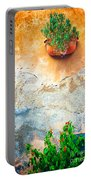 Vase On Decayed Wall Portable Battery Charger