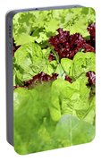 Vegetable Garden  Portable Battery Charger