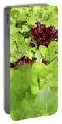 Vegetable Garden  Portable Battery Charger