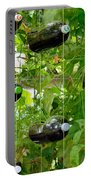 Vegetable Growing In Used Water Bottle 4 Portable Battery Charger