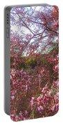 Vekol Wash Desert Ironwood In Bloom Portable Battery Charger