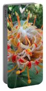Veldfire Protea Portable Battery Charger