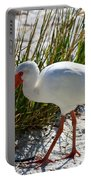 Venice Beach Ibis Portable Battery Charger