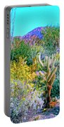 Verdant Spring Mohave Desert Portable Battery Charger