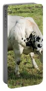 Very Muscled Cow In Green Field Portable Battery Charger