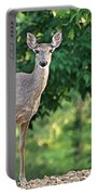 Very Pregnant Doe Portable Battery Charger