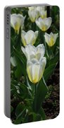Very Pretty Spring Garden With Flowering White Tulips Portable Battery Charger