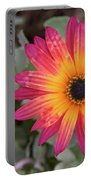 Vibrant African Daisy Portable Battery Charger