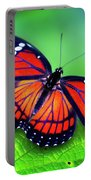 Viceroy Perch Portable Battery Charger