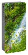 Vidae Falls, Oregon Portable Battery Charger