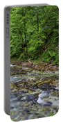 View In Vintgar Gorge - Slovenia Portable Battery Charger