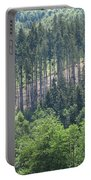 View Of The Mixed Forest Portable Battery Charger