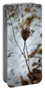 Vignettes - Snow Thistle Portable Battery Charger