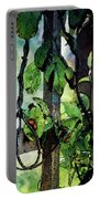 Vine And Trellis Digital Watercolor 4472 W_2 Portable Battery Charger