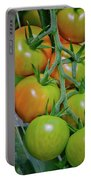 Vine Ripened Rainbows Portable Battery Charger