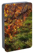 Vineyard 13 Portable Battery Charger