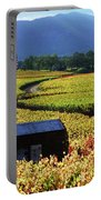 Vineyard 25 Portable Battery Charger