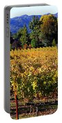 Vineyard 4 Portable Battery Charger