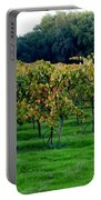 Vineyards In California Portable Battery Charger