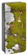 Vintage Moss Portable Battery Charger
