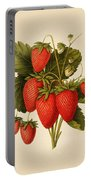Vintage Strawberries Portable Battery Charger