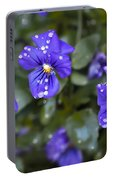 Violas After Spring Rain Portable Battery Charger