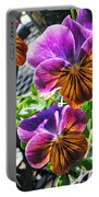 Violas Portable Battery Charger