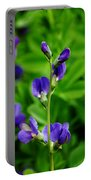 Violet Blue Portable Battery Charger