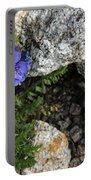 Violet Climbing  Portable Battery Charger