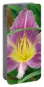Violet Day Lily Portable Battery Charger