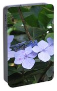 Violets O The Green Portable Battery Charger