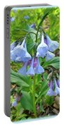 Virginia Bluebells - Mertensia Virginica Portable Battery Charger