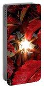 Virginia Creeper Sunburst 2 Portable Battery Charger