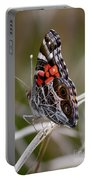 Virginia Lady Butterfly Side View Portable Battery Charger
